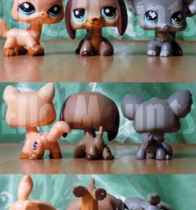 ЛПС, Littlest pet shop ,LPS (оригинал)