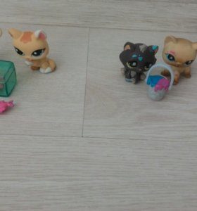 Littlest Pet Shop u Hello Kitty зверушки
