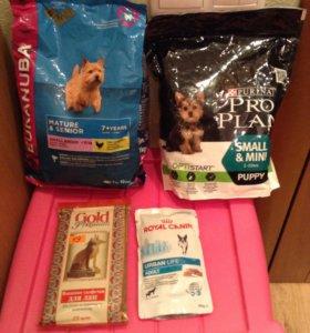 Жидкий и сухой корм для мелких пород собак.