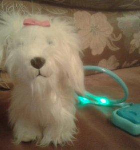 Интерактивная собачка