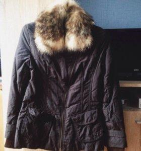 Куртка женская Осень -Весна