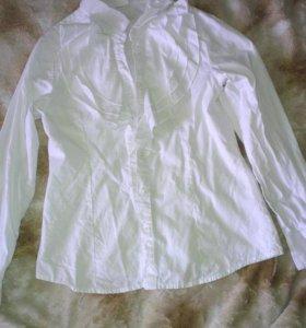 Рубашка Школьная 134 рост