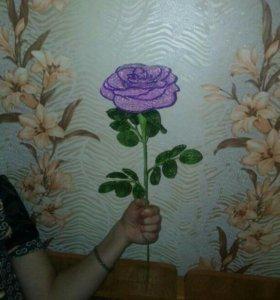 Розы!!!