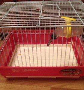Клетка для грызунов 🐭🐹