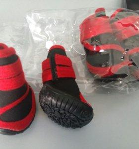 Обувь для собаки размер XS