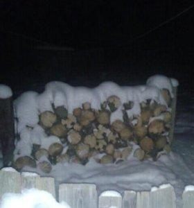 Сухие дрова примерно 3 куб