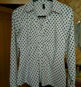 Блуза- батник