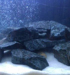 Камни для оформления аквариума