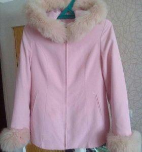Куртка( весна-осень) )