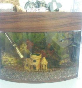 Аквариум с рыбками и тумба