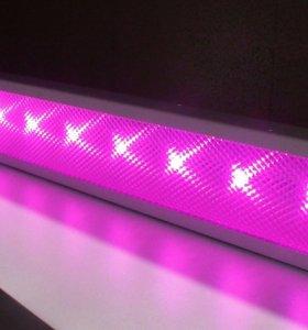 Фитолампы на светодиодах полного спектра