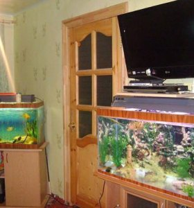 Продаю один аквариум