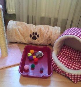 Набор для кошек/маленьких собак