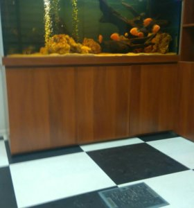Оформление, чистка аквариумов.