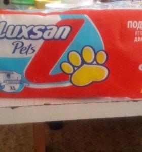 Памперсы для собак 2-4кг