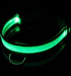 Ошейник для собак с подсветкой и зарядкой usb.