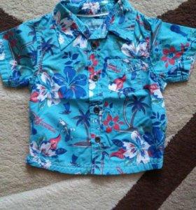 Рубашка для стиляги