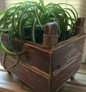 Деревянный ящики лофт