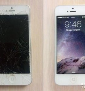 Замена дисплея (модуля) iPhone 5SE/SE/чёрный/белый