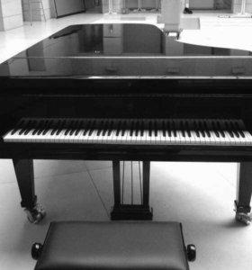 Настройка фортепиано, пианино, рояля
