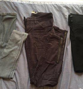 Штаны, юбка, леггинсы