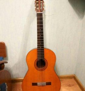 Гитара cm40