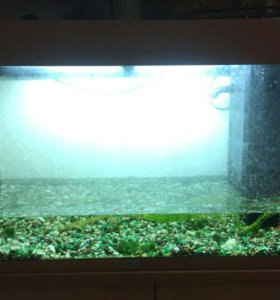 Продаю аквариум Juwel Rio 125.