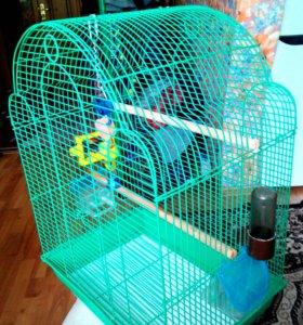 Клетки для попугаев.