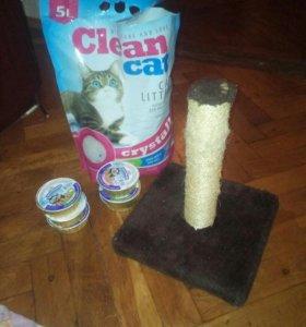 Для кошек туалет, когтеточка, консервы