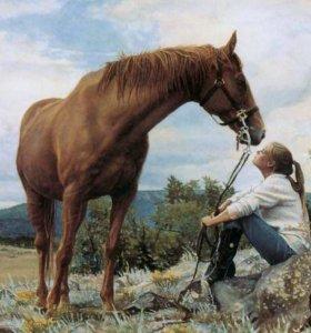 "Картина по номерам ""Девушка и лошадь"""