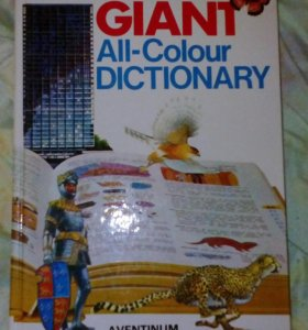 Книга The Giant All-Colour Dictionary