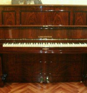 Пианино Бехштейн