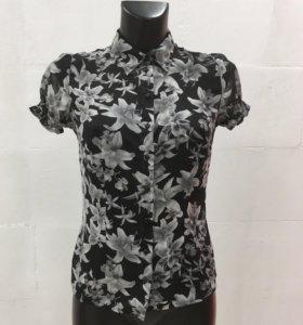 Блузка Zolla, размер 40-42 (XS)