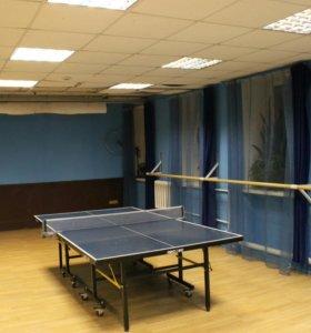 Настольный теннис, пинг-понг на Менделеевской