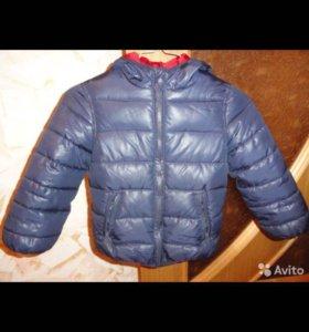 Куртка на мальчика Акула