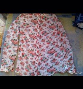 Блузка,рубашка Zolla