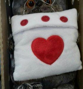 Кот Басик с подушкой