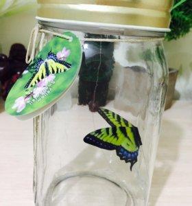 Бабочка интерактивная новая