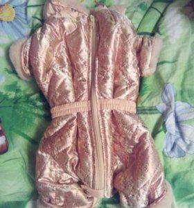 Собачий костюм