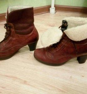 Зимние ботинки Gabor
