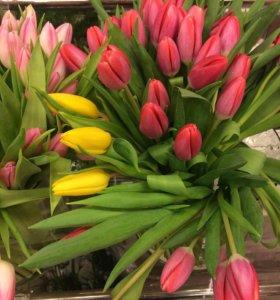 букет из 25 Тюльпанов в коробке-вазе