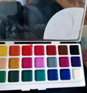 Краски 24 цвета