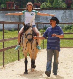 Фитнес на лошадях