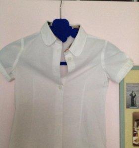 Рубашка Burberry оригинал 4 года, 100-106.