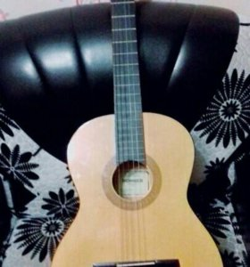Гитара HC 06