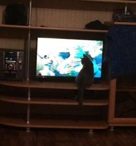 на запчасти телевизор!