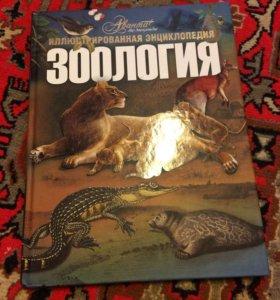 Книга Зоология