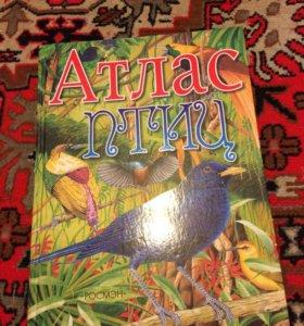 Книга про птиц