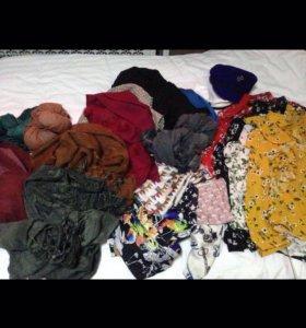 Платки,палантины,шарфы