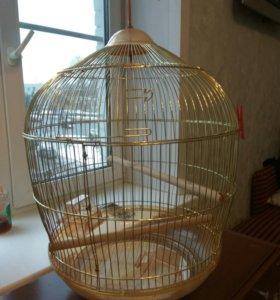 ОГРОМНАЯ клетка для птиц